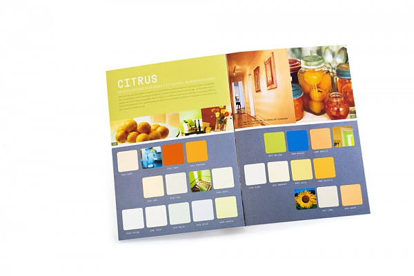 Chip Mounted color card